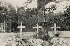 Groby niemieckich żołnierzy na terenie Maziarni z okresu I wojny światowej